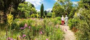 The Savill Garden
